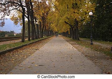 Autumn Italian landscape in Lucca - Italian landscape (Lucca...