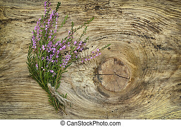 Common heather flowers on wooden surface - Calluna vulgaris...