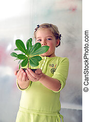 little girl holding small plant - growth concept with small...