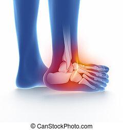 torcido, tornozelo, azul, branca, isolado
