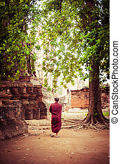 Buddhist monk at ancient ruins of Wat Mahathat. Ayutthaya,...