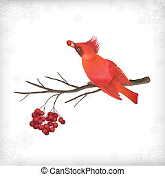 Winter Christmas Bird Rowan Tree Branches - Vector Christmas...