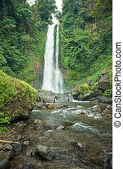 Waterfall in Bali jungle - Beautiful tall waterfall deep in...