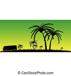 coconut palms in the nature color vector