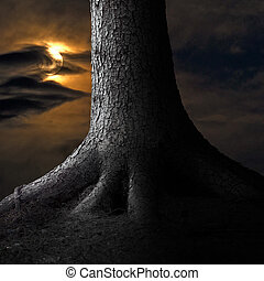 Big tree in moonshine - Big tree on moody dark sky with...