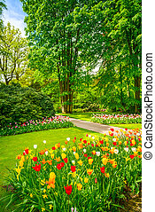 Garden in Keukenhof, tulip flowers and trees. Netherlands -...