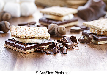 Delicious Smores with chocolate and marshmallows. Extreme...