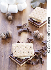 Smores - Delicious Smores with chocolate and marshmallows....
