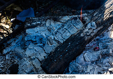 Fire place - Pots boiling water on camping fire pit with...