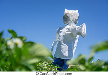 Scarecrow over potato platation leafs - Side view of...