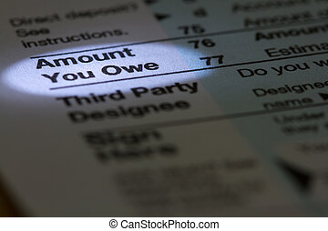 Amount You Owe - Horizontal photo of form with Amount You...