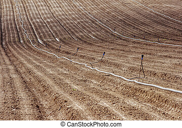 Furrows - Regular furrows of land with long pipes for...