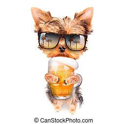 bêbado, cão, Cerveja