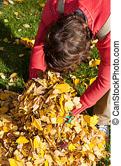 Man cleaning garden from leaves during autumn