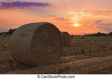 Hay bale at sunset in Hungary