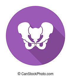 Pelvis - Anotomy Pelvis. Single flat color icon. Vector...