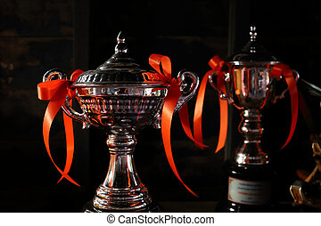 troféu, Prêmio, vencedor, campeonato, evento