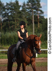 Portrait of brunette woman riding brown horse in summer