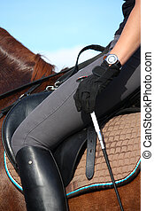 Close up of rider in saddle on chestnut horse