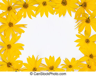frame of flowers - frame of yellow fresh bright colors with...