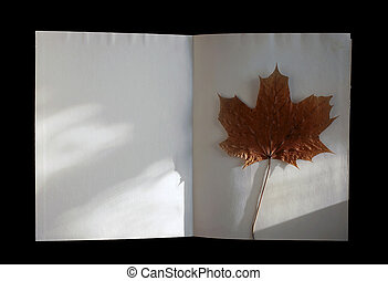 Autumn book with maple-leaf - Vintage autumn book with...