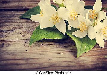 Jasmine Flower - Jasmine flower on rustic wooden table....