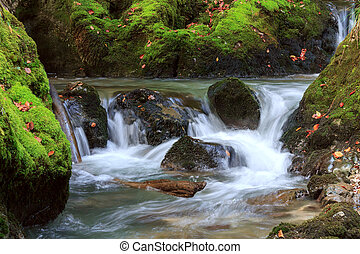 Mountain waterfall fast stream water in the Transylvania -...