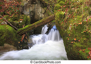 mountain waterfall. fast stream water