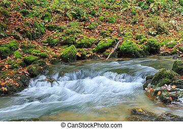 Mountain waterfall fast stream in Transylvania - Mountain...