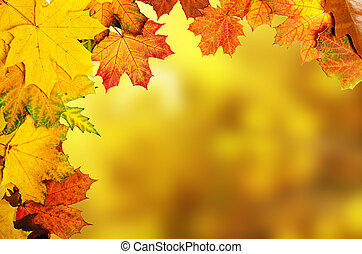 Autumn leaves frame - Frame from vivid colorful autumn...