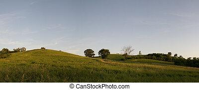 Iowa Landscape During Summer