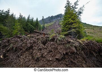 Landslide due to deforestation - Big landslide in the...