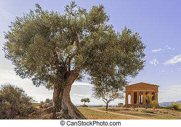 Agrigento - Valle dei Templi - A greek temple in Sicily with...