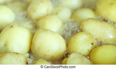 Potatoes fried in oil - Potatoes fried in vegetable oil