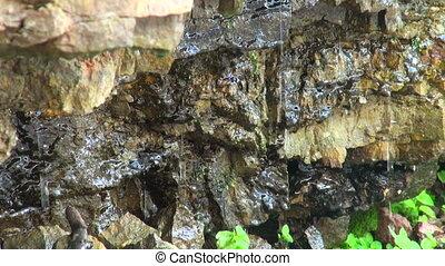 Stones, moss, drops, water.