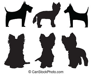 Small dog silhouettes Yorkshire Terrier and Schnauzer