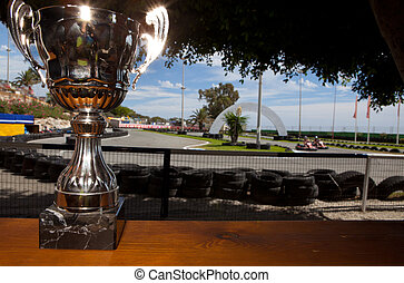 Karting cup - Silver cup as a price of karting competition...