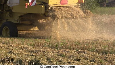 farm combine harvest - Farm agricultural machinery cut ripe...