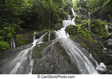 Smoky Mountains - Place of a Thousand Drips, Great Smoky...