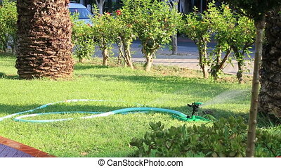 Grass Sprinkler watering - Sprinklers showering lawn