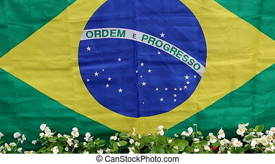 Brazilian flag and flowers - Flag of Brazil and line of...
