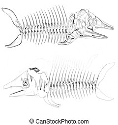 3d metall illustration of fish skeleton on a white...