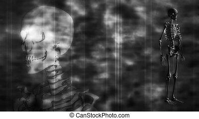 Skeleton Grunge Black an White Loop