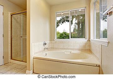 Bath tub with windows