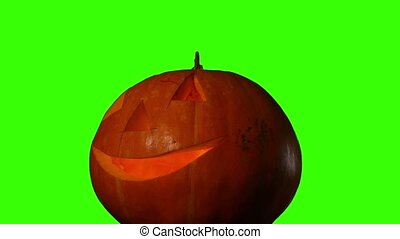 Hellowen pumpkin on green screen