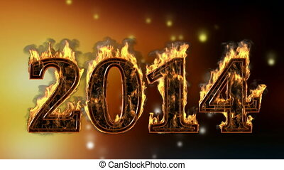 2014 burning year