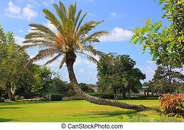 Park Ramat Hanadiv, Israel - picturesque area in the Park...