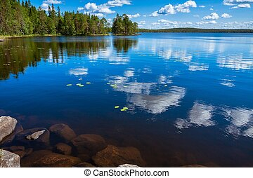 pine forest reflection in the lake in the Salamajarvi...