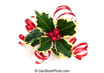 Holly. - Sprig of holly with berries and ribbon isolated on...