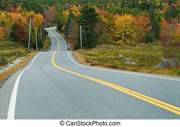 Scenic drive through fall forest